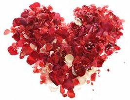 Abundant Heart